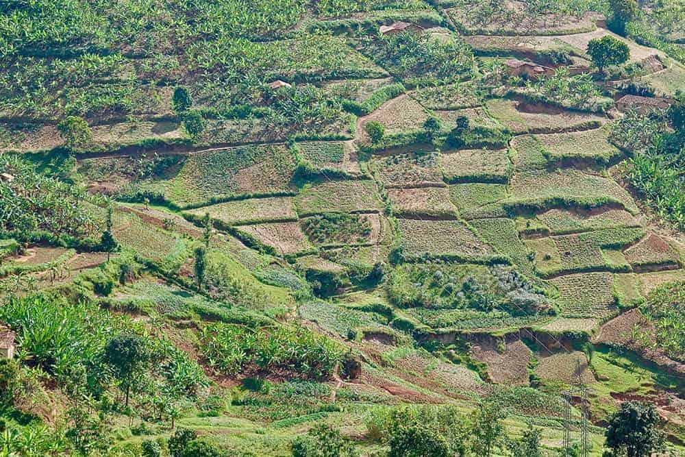 flying a drone in Rwanda