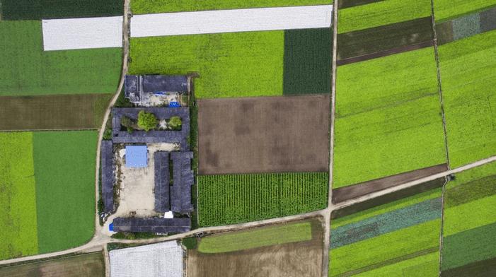 scholar-farms