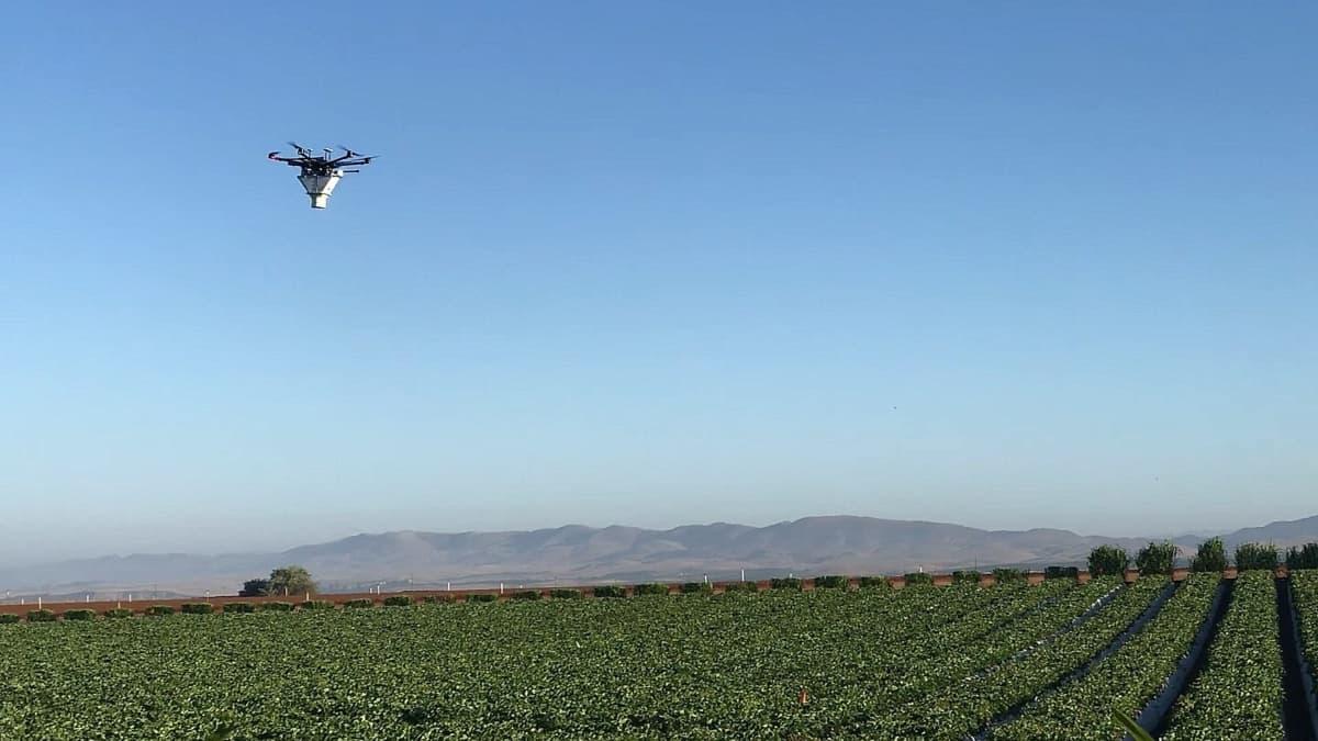 drones biocontrol