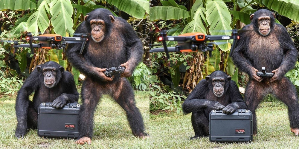 ape-drone