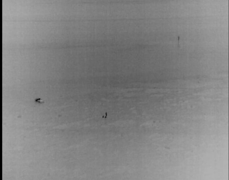 drone-hovercraft-rescue