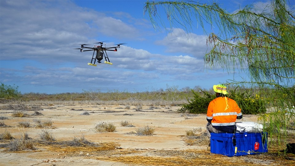 island-conservation-invasive-species-preventing-extinctions-WIRED-drone-seymour-norte-invasive-rat-removal