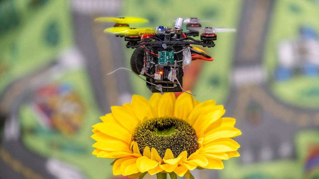 drone-bees